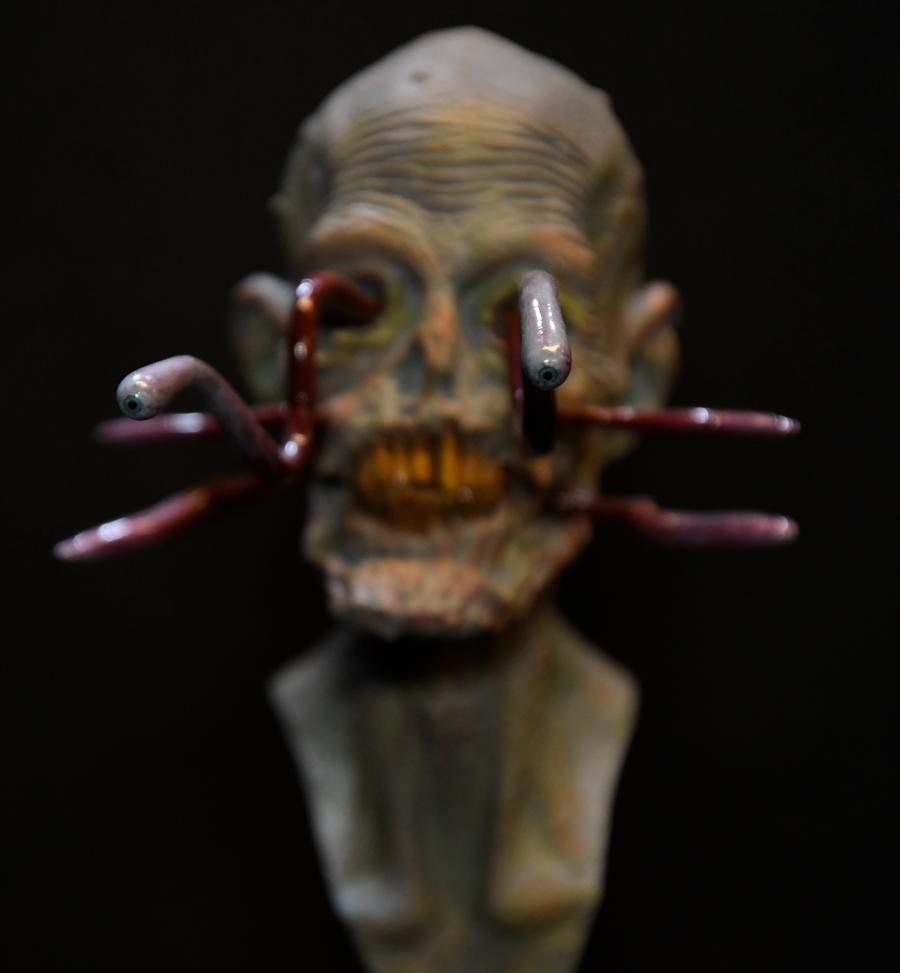 CloseUp Nightmare Blurry
